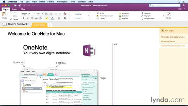 office for mac tutorial